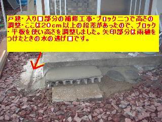 f0031037_1916079.jpg