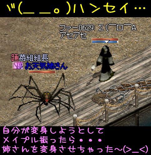 f0072010_121224.jpg
