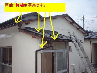 f0031037_19401630.jpg