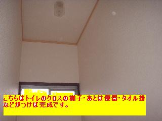 f0031037_1944684.jpg
