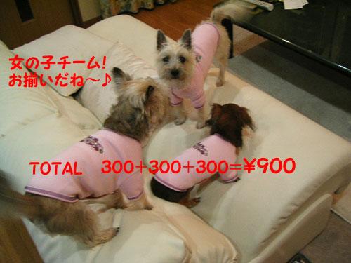 e0066883_20104484.jpg
