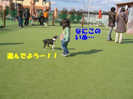 c0092097_11464347.jpg