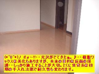 f0031037_211546.jpg