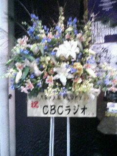 2.navy&ivory in 名古屋クラブクアトロ_e0013944_3384565.jpg
