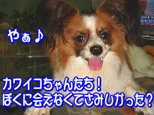 f0011845_135324.jpg