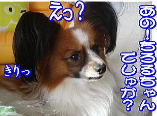 f0011845_164327.jpg