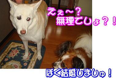 f0011845_184183.jpg