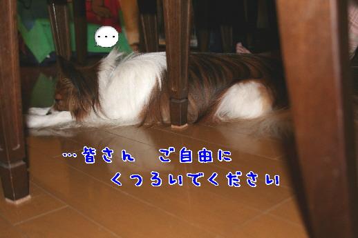 d0013149_0595334.jpg