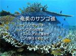 1/17 研修会_a0010095_053098.jpg