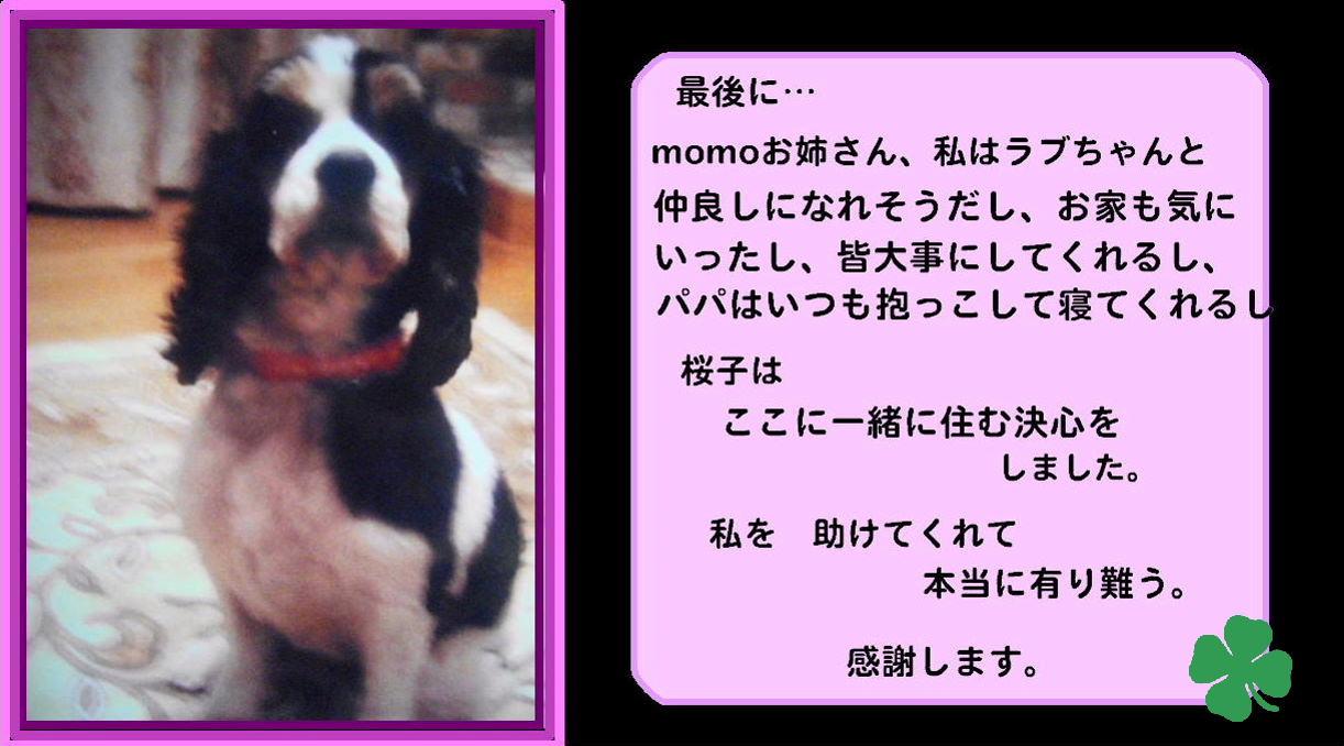 b0072501_22112860.jpg