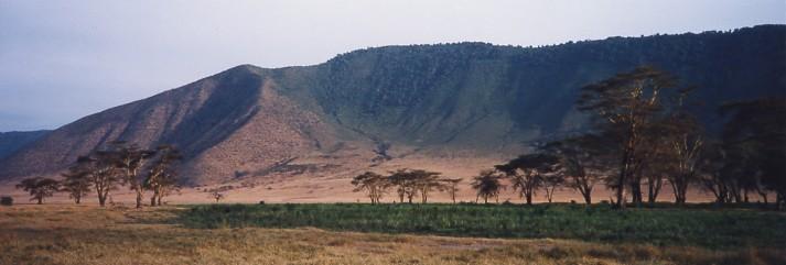 キリマンジャロ登頂記 (12) ンゴロンゴロのクレーターでサファリ_c0011649_0154699.jpg