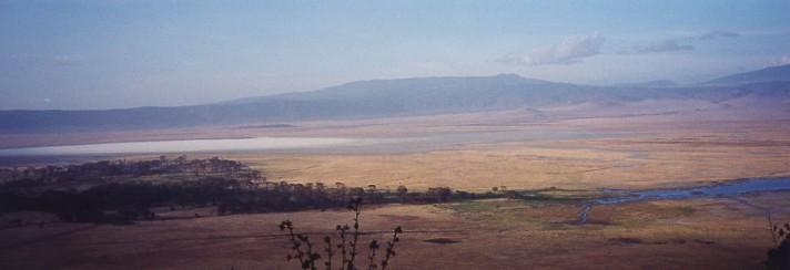 キリマンジャロ登頂記 (12) ンゴロンゴロのクレーターでサファリ_c0011649_0164172.jpg