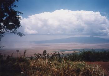 キリマンジャロ登頂記 (12) ンゴロンゴロのクレーターでサファリ_c0011649_0211052.jpg