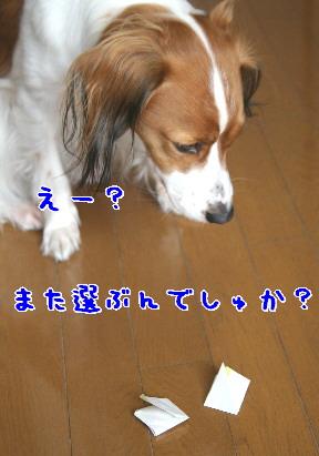 d0013149_22410100.jpg