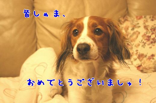 d0013149_23245528.jpg