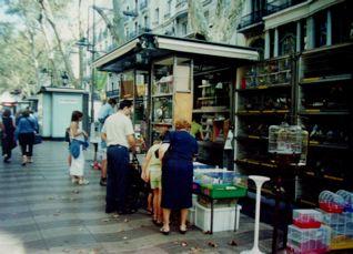 バルセロナの町_a0079995_2044232.jpg