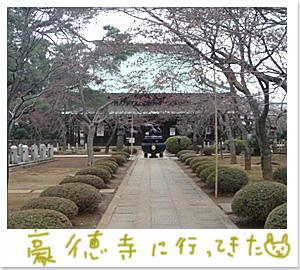 豪徳寺でおまいり_d0084214_16365720.jpg