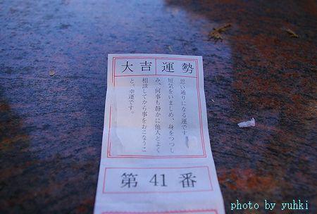 おみくじ、鎌倉にて、_a0043323_2046349.jpg