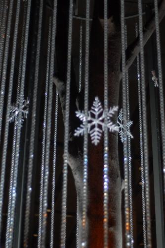冬のホタル_f0050534_15575069.jpg