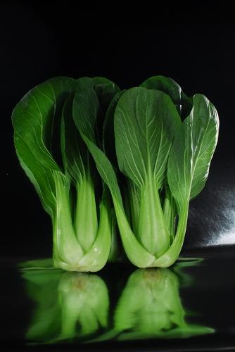 野菜ヤサイベジタブル_f0050534_1621749.jpg