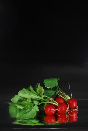 野菜ヤサイベジタブル_f0050534_1624241.jpg