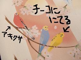 b0082757_232989.jpg