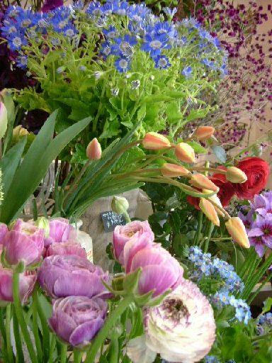 オークリーフ(春の花木)_f0049672_130208.jpg