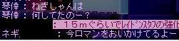 f0084010_2053462.jpg