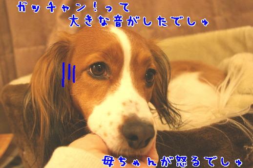 d0013149_0253726.jpg