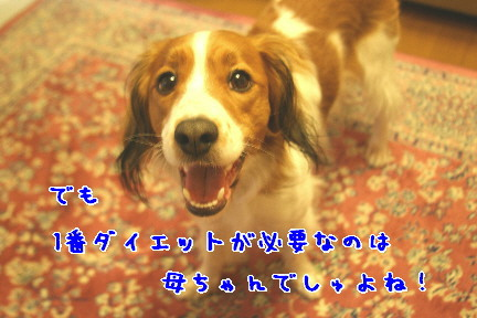 d0013149_1234818.jpg