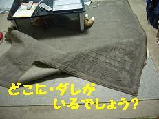 b0098660_20593949.jpg