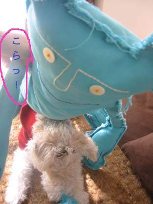 d0073885_22281618.jpg