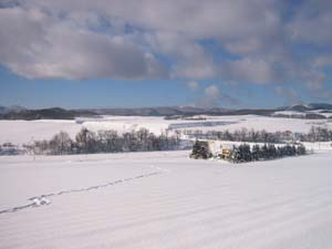 宿の前の雪原を歩いてみた。_f0096216_20523012.jpg