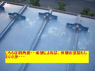 屋根と鼠と賃貸_f0031037_1711118.jpg