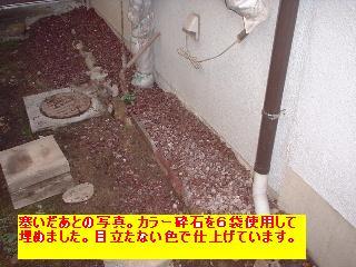 屋根と鼠と賃貸_f0031037_1711187.jpg