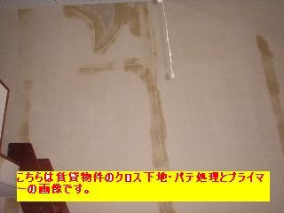 屋根と鼠と賃貸_f0031037_17121377.jpg
