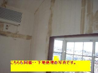 屋根と鼠と賃貸_f0031037_17123722.jpg