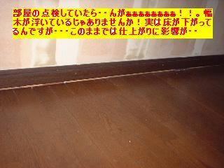 屋根と鼠と賃貸_f0031037_1713324.jpg