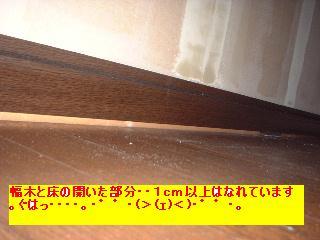 屋根と鼠と賃貸_f0031037_17134063.jpg
