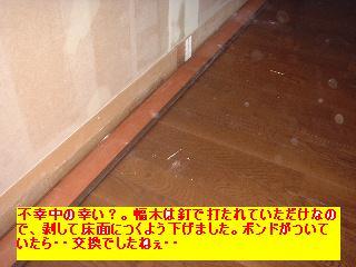 屋根と鼠と賃貸_f0031037_17134955.jpg