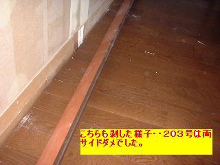 屋根と鼠と賃貸_f0031037_1713589.jpg