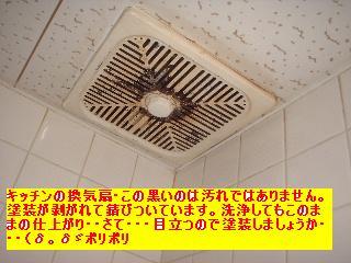 屋根と鼠と賃貸_f0031037_1713954.jpg