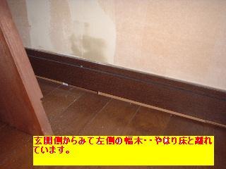 屋根と鼠と賃貸_f0031037_1714789.jpg