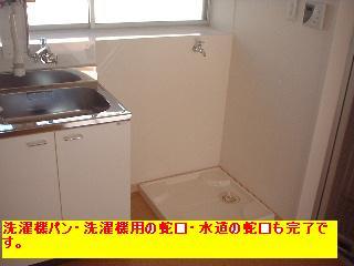 屋根と鼠と賃貸_f0031037_17162848.jpg