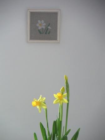 1月の誕生花_e0116763_7434667.jpg