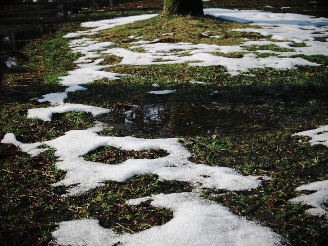 故郷の風景 雪国の大地_f0024992_1442212.jpg