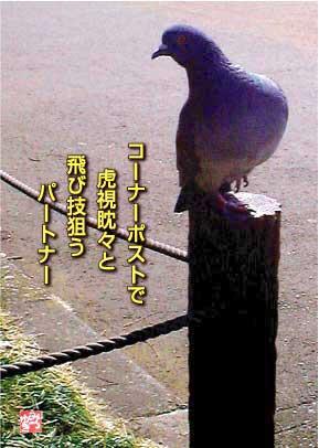 b0092707_71727.jpg