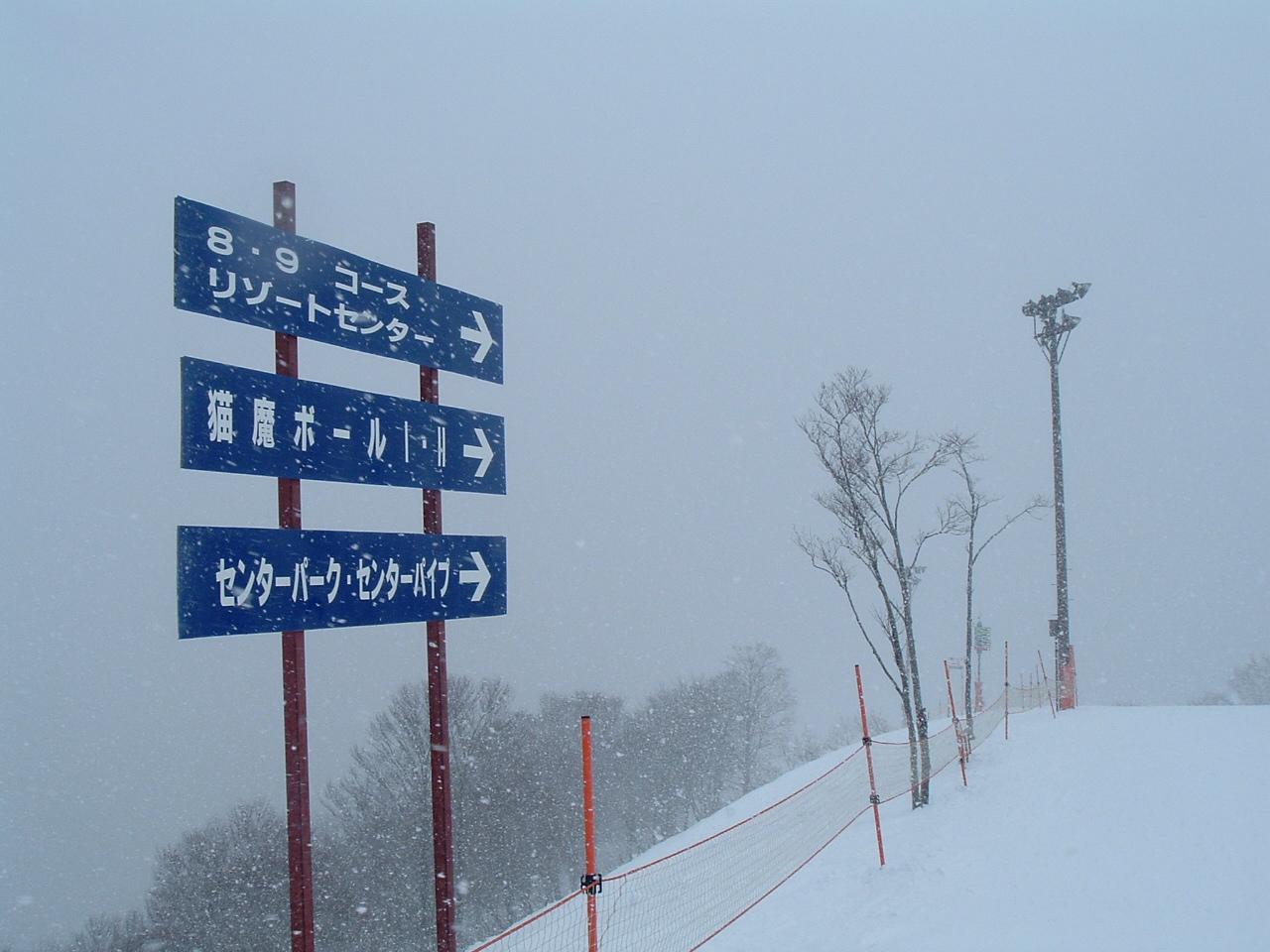 猫魔ヶ岳_f0032130_17543273.jpg