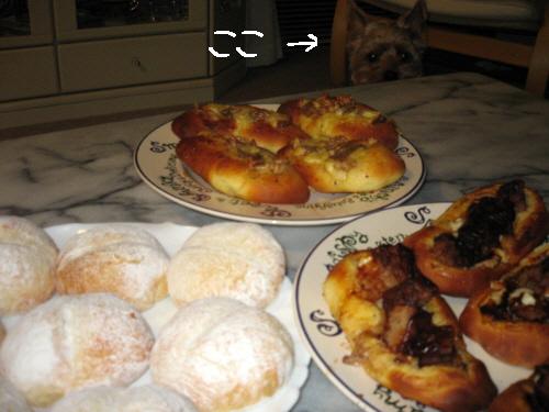 3つのパンの大皿が並んだテーブルの向こう側に、顔だけ覗かせているわんこ。じーっとパンを見つめている目は、味見がさせて貰えるのか貰えないのか、必死で考えているように見えます。
