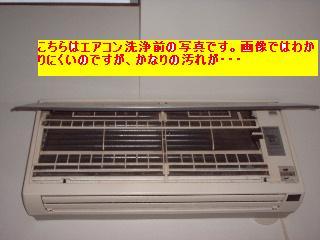 f0031037_20113333.jpg